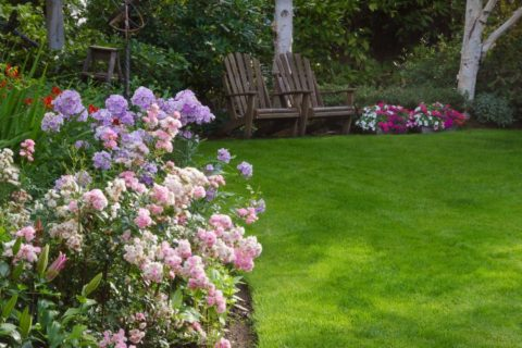 Best Landscaping and Lawn Care Companies for Design and Maintenance