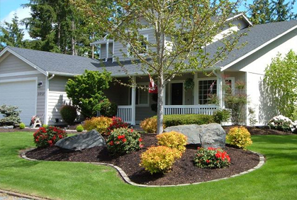 Landscaping Front Yard